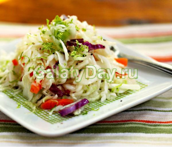 Салат из свежей капусты и моркови, мяты и кориандра